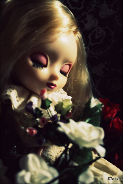 [Les Chrysanthèmes] Shinku - Nfield//Dream (p5) Mahaut11