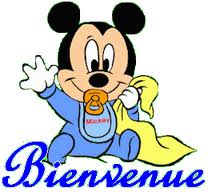 Bonsoir Mickey10