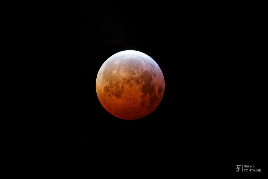 Éclipse de lune du 22-01-2019. Bruno_10