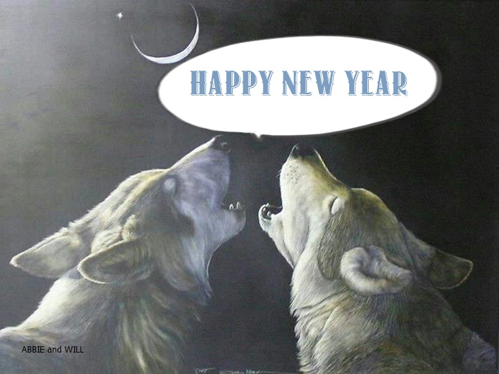 Happy new year Voeux_10
