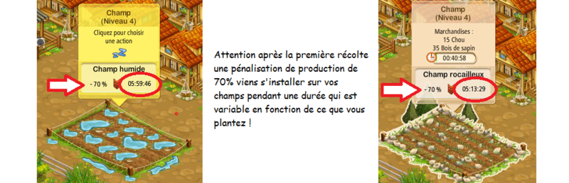 BIEN COMMENCER DANS LE VILLAGE DE LA COOP. Champs10