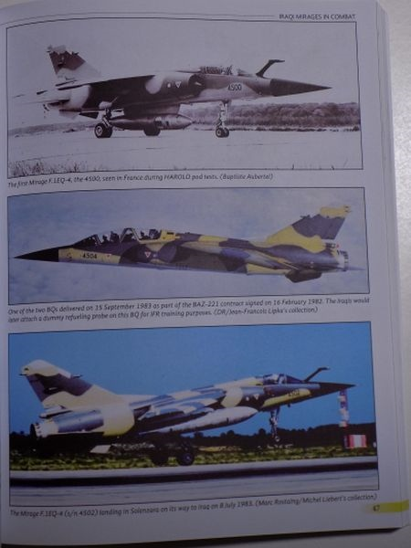 Iraqi Mirages in Combat 1981-2003 Miguel13
