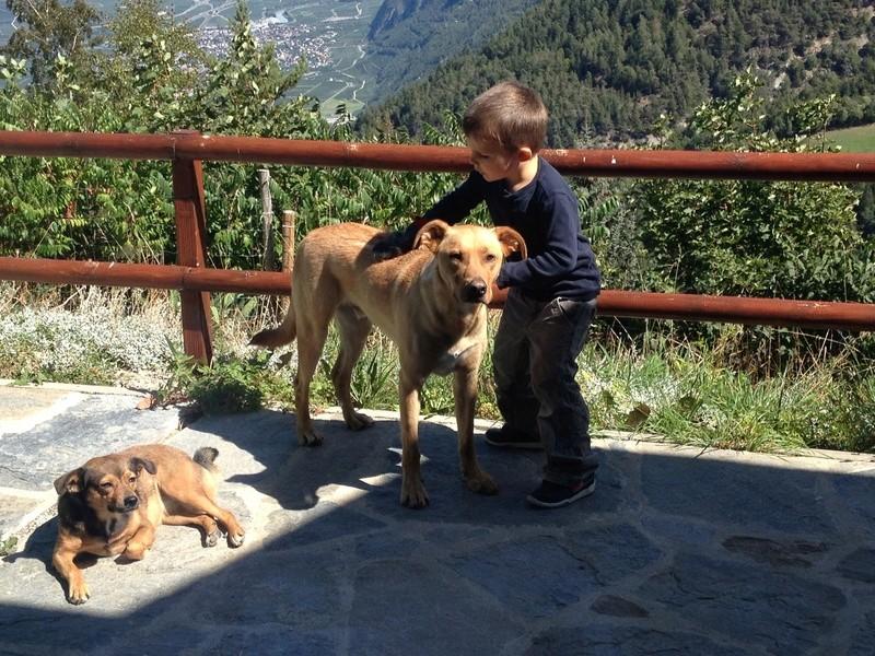 Des enfants et des chiens... - Page 2 Img_2211