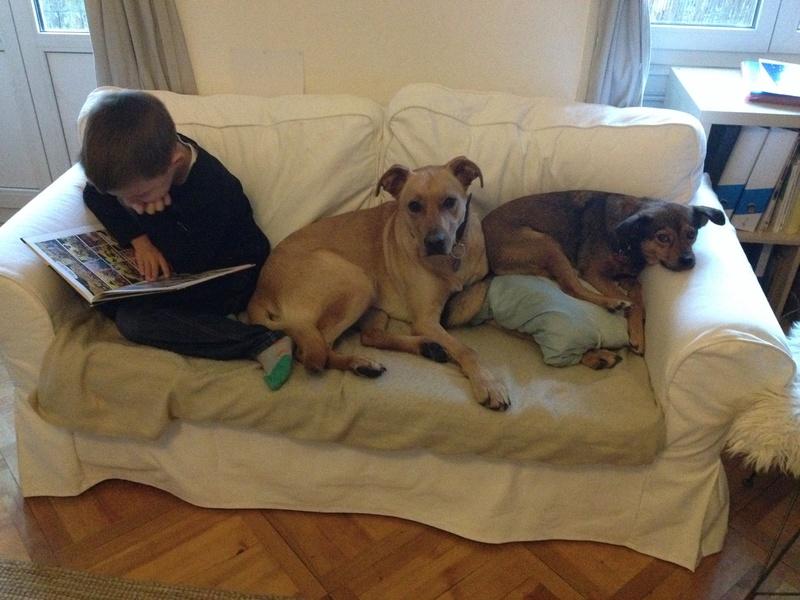 Des enfants et des chiens... - Page 2 Img_2311