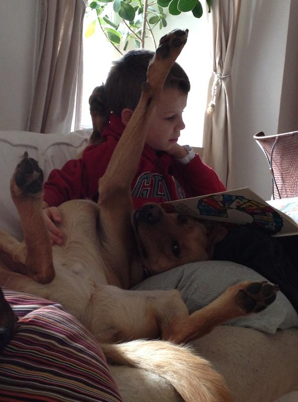 Des enfants et des chiens... - Page 2 Img_2411