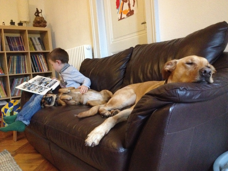 Des enfants et des chiens... - Page 2 Img_2412