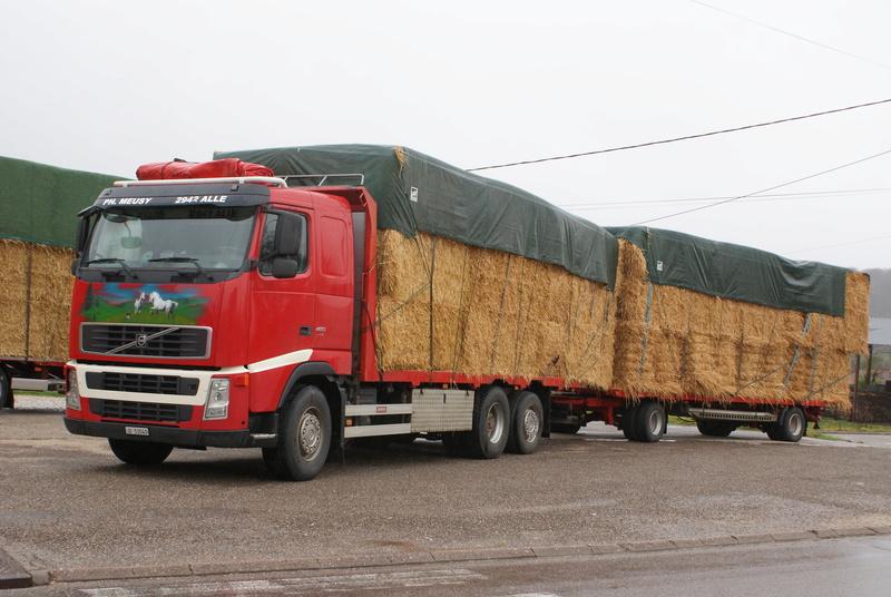 Transports de paille - Page 4 Dsc00410