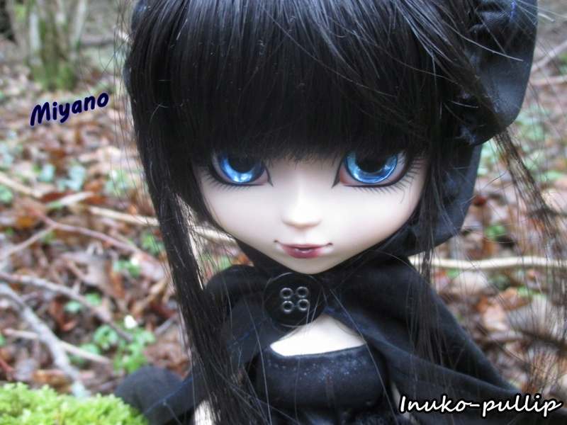 [VENTE] Pullip HENRI CUSTO' Taeyang GYRO + Collection Miyano14