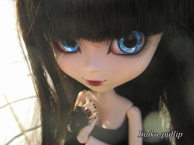[VENTE] Pullip HENRI CUSTO' Taeyang GYRO + Collection Miyano18