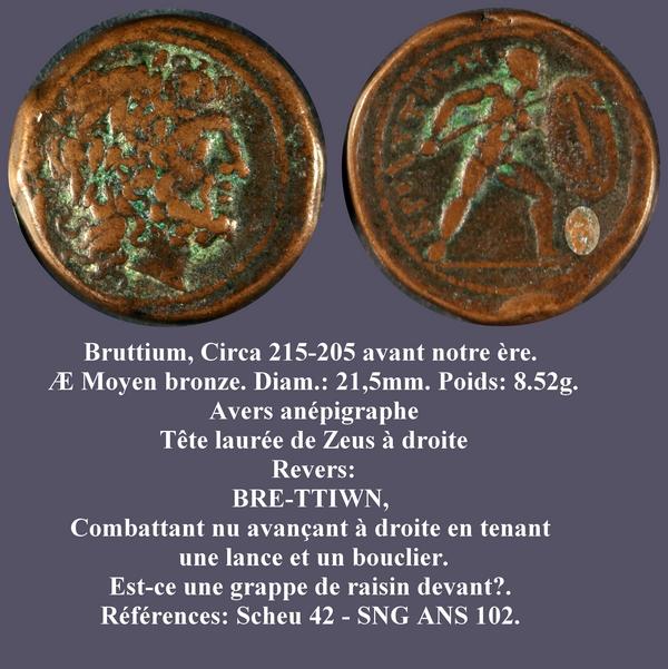 Brittium ou les raisins de ma colère... Brutti10