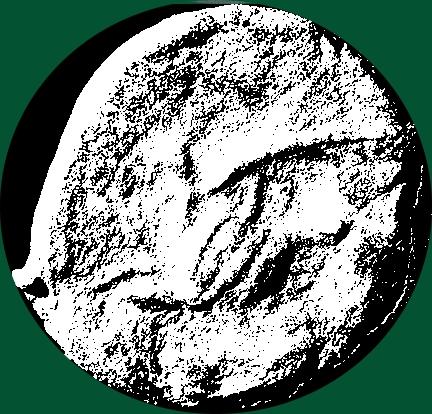 Bronze de Rhodes ?  Grifon10