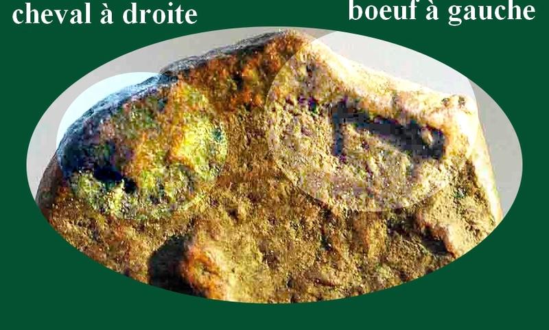 Bronze de Rhodes ?  Marc_l10
