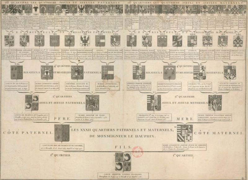 Généalogie, Héraldique, Armoiries, et Blasons de Marie-Antoinette Arbre_10