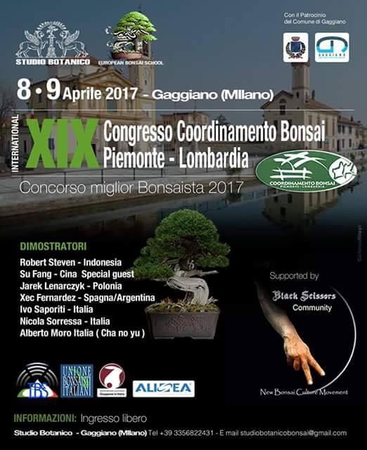 Coordinamento Piemonte/Lombardia vicino a Milano Gaggia10