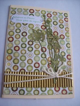Échange mensuel de cartes  - Page 3 101_2912