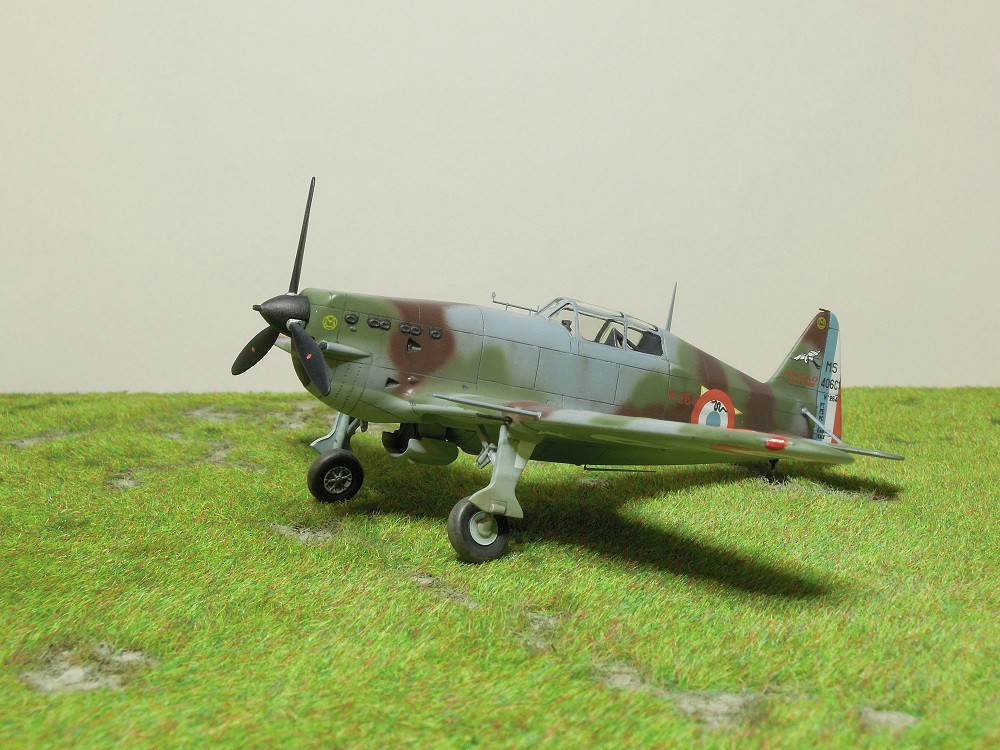 Morane-Saulnier MS-406 C.1 - AZUR 1/72 (Terminé) - Page 3 Dscn0819