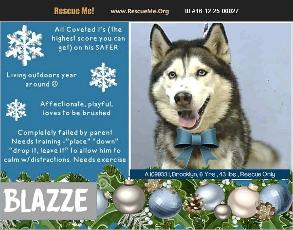Blazze Becomes Z'ev: Follow His Journey from Death Row to Member of the Family Blazze10