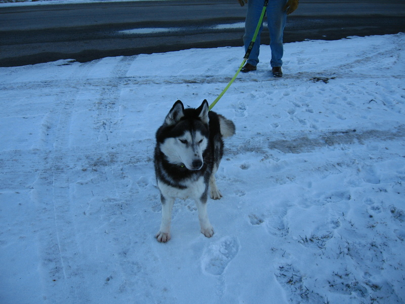 Blazze Becomes Z'ev: Follow His Journey from Death Row to Member of the Family Img_0013