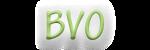 BVO Bear