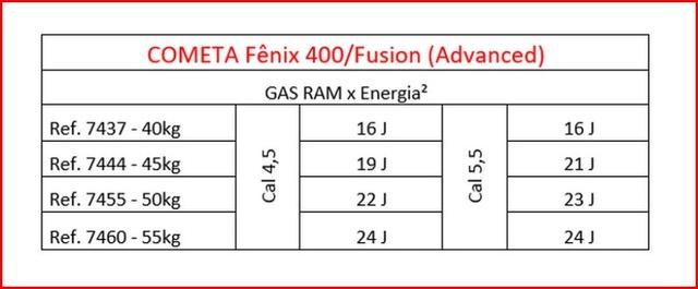 COMETA Fenix 400 Compact Star GP - Page 5 Ram_110
