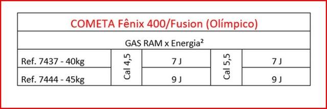 COMETA Fenix 400 Compact Star GP - Page 5 Ram_210