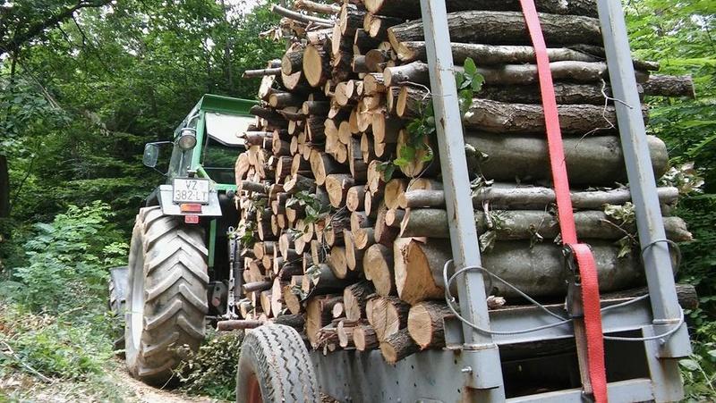 Izrada ogrijevnog drva - Page 20 15319011