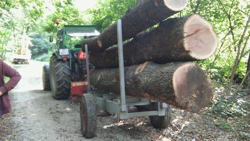 Izrada ogrijevnog drva - Page 20 15326411