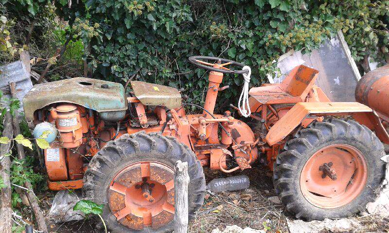Traktori  Pasquali opća tema - Page 4 D4b24610