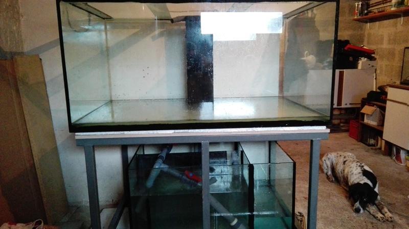 Projet fishroom Img_2015