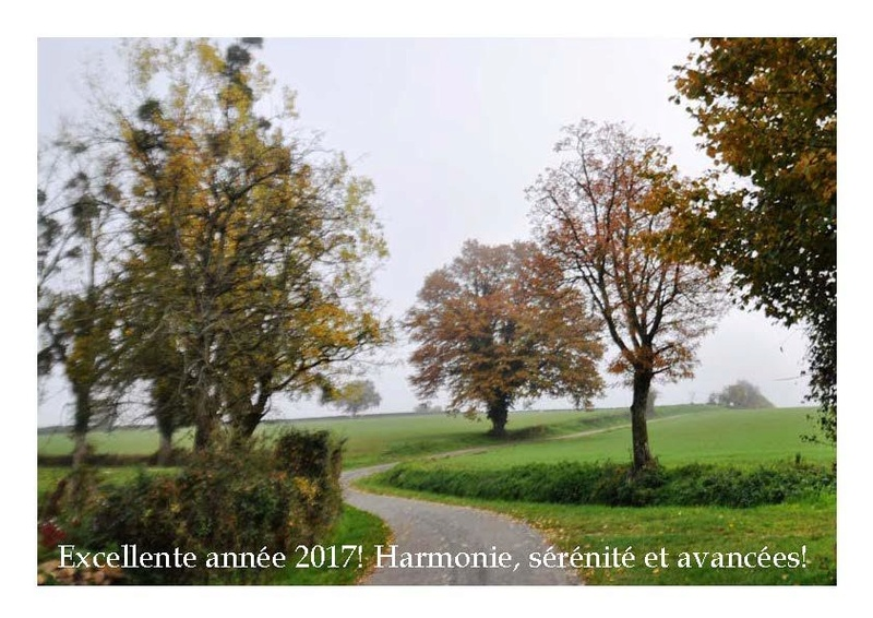 Voeux 2017 ! Unname10