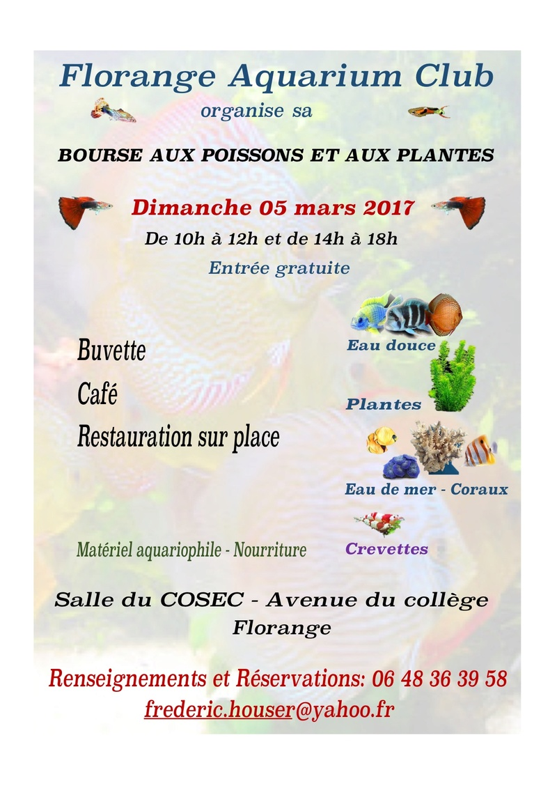 Bourse Florange (57) - 05 mars 2017 Fullsi10