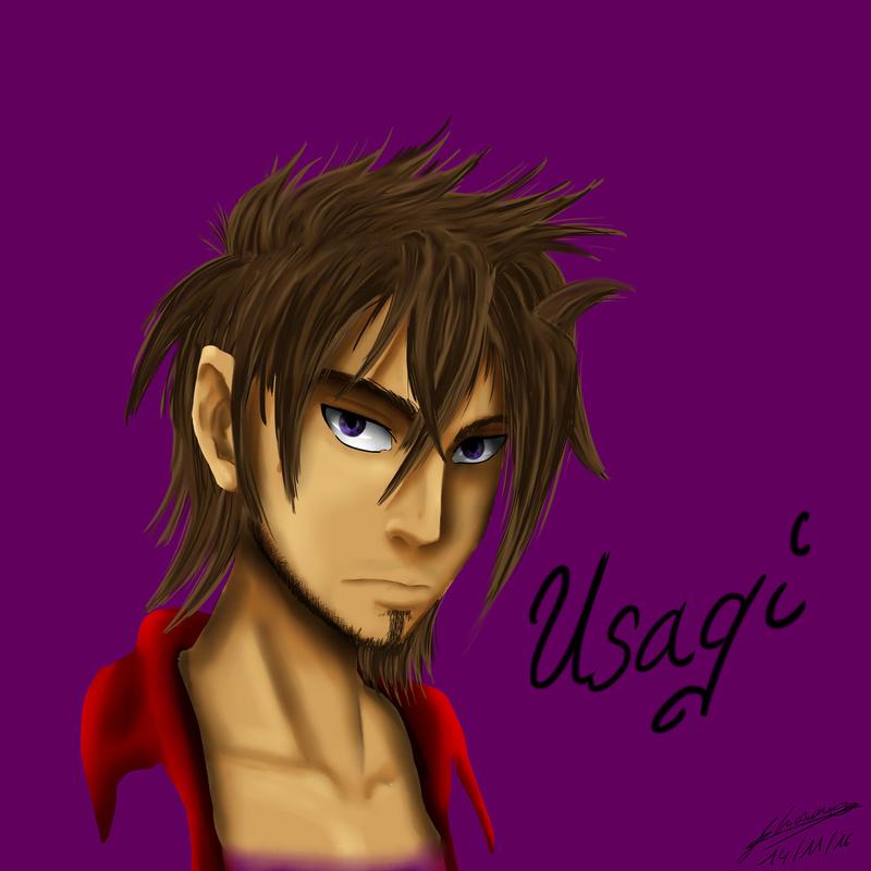[ Fiche descriptive. ] Akihiko Usagi. Usagi_10