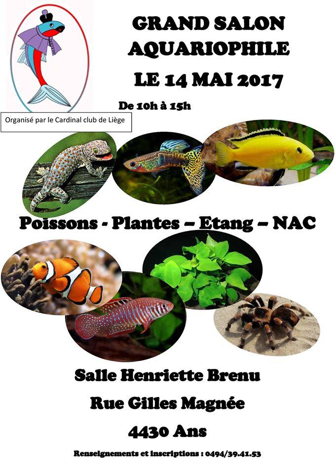 2017-05-14 [Belgique|Liège] Salon aquariophile du Cardinal 2017_012