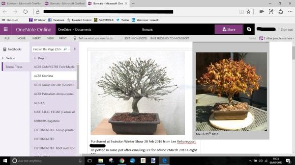 bonsai tracking  Captur10