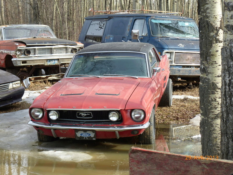 D'autre photos d'épave de Mustang 1967 1968 P1000411