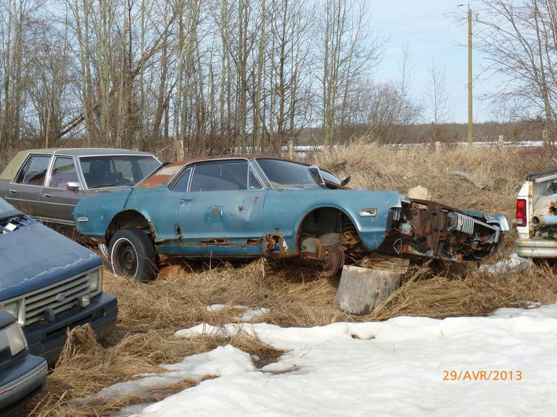 D'autre photos d'épave de Mustang 1967 1968 P1000412