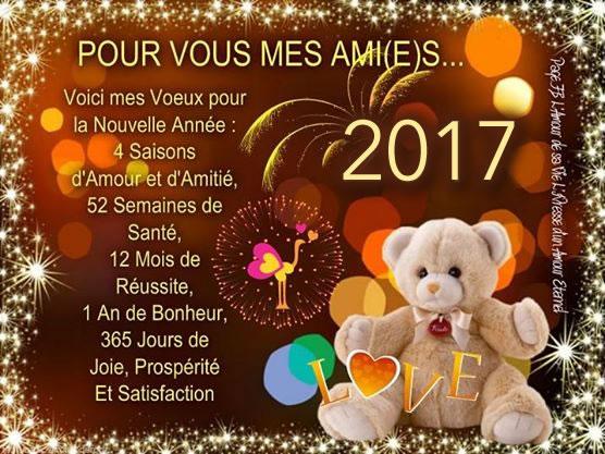 Vœux 2017  Bonne-10