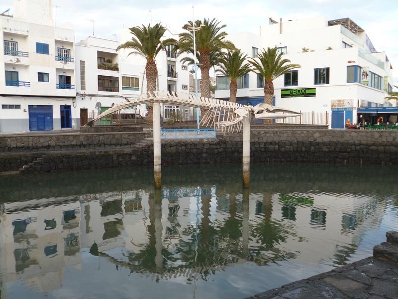 Lanzarote, l'île esthétique - Page 2 P1030927