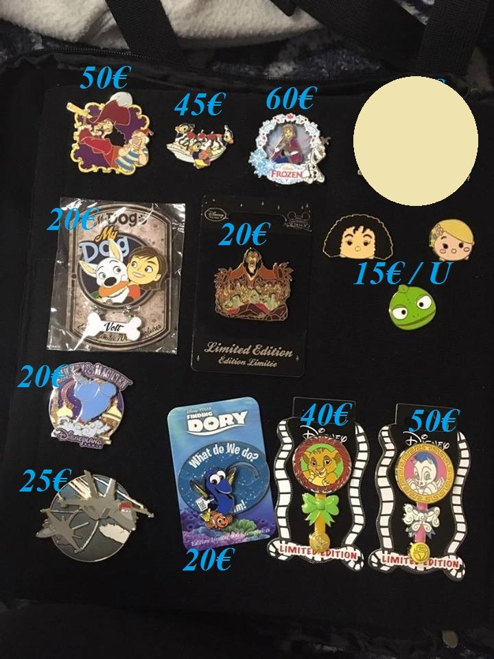 [Vente - Recherche] pin's disney / pin trading  (TOPIC UNIQUE) - Page 14 Ventes35