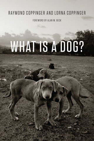 What is a Dog? - Raymond & Lorna Coppinger 97802210