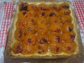 Tarte aux abricots frais nature.2. 13407010