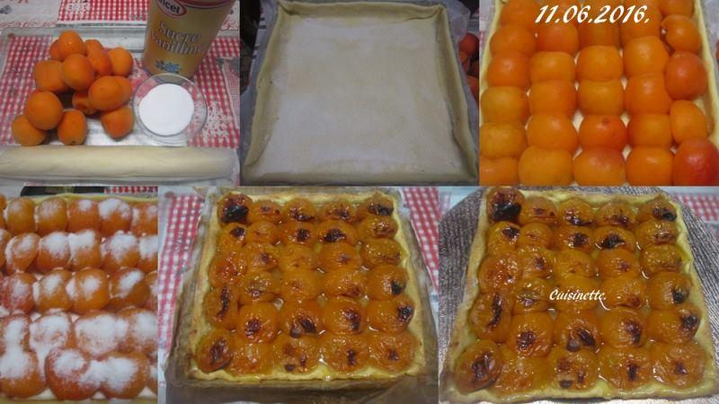 Tarte aux abricots frais nature.2. 13445410