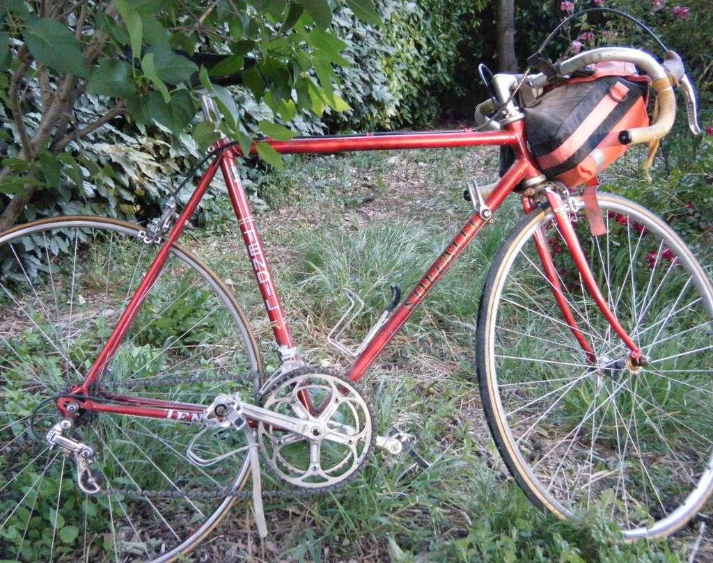 cadre inconnu 1979/1980 tout reynolds 531....devenu puch  Dscf5010
