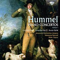 Vos meilleurs concertos pour piano - Page 13 Hummel10