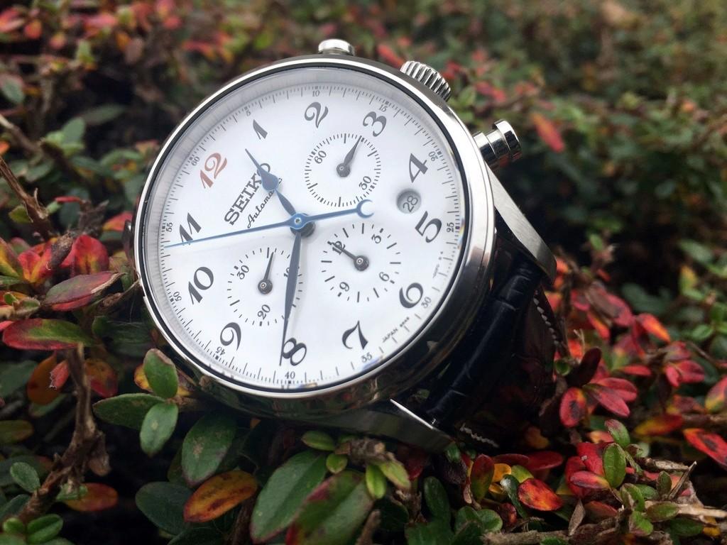 Votre montre du jour - Page 6 Fall_p10