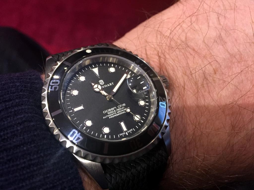 Votre montre du jour - Page 7 Steinh10