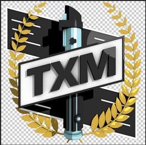 Logo-Wettbewerb für TXM Bildsc11