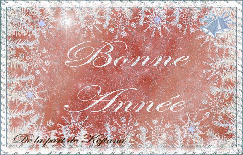 Bonne année à tous ! Bonnea12