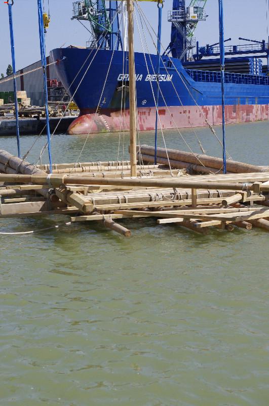 La Méduse à l'eau _igp3412