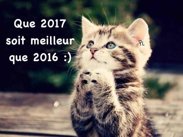 Happy new year Bonne-10